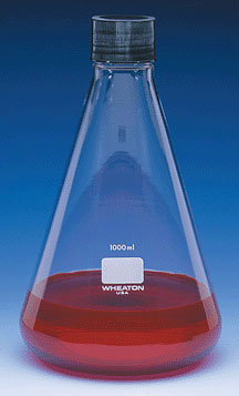 Clear Glass Erlenmeyer Flasks