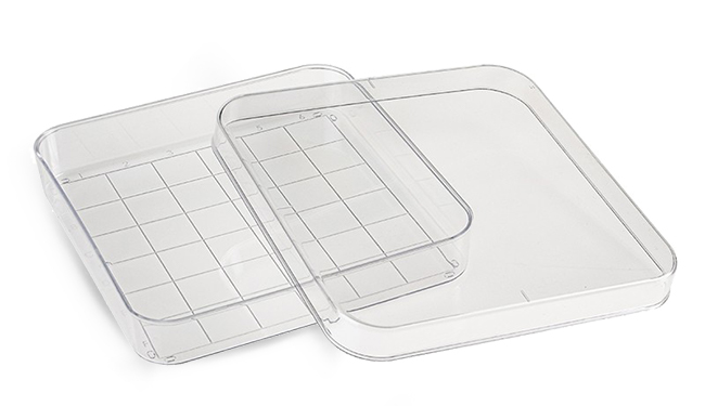 Plastic Petri Dishes, Clear Polystyrene Sterile Square Petri Dishes w/ Grid