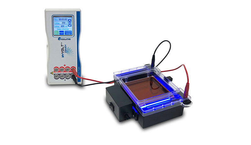 Lab Equipment, MyGel InstaView™ Complete Electrophoresis System With Blue LED Illuminator