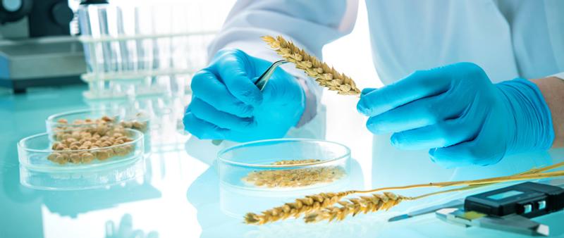 Food Science Lab Supplies & Equipment