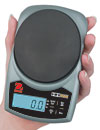 Hand Held Portable Scale