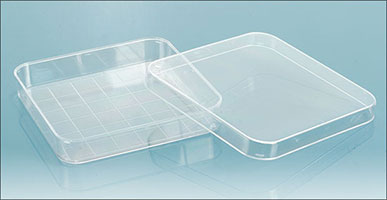 Polystyrene Petri Dishes